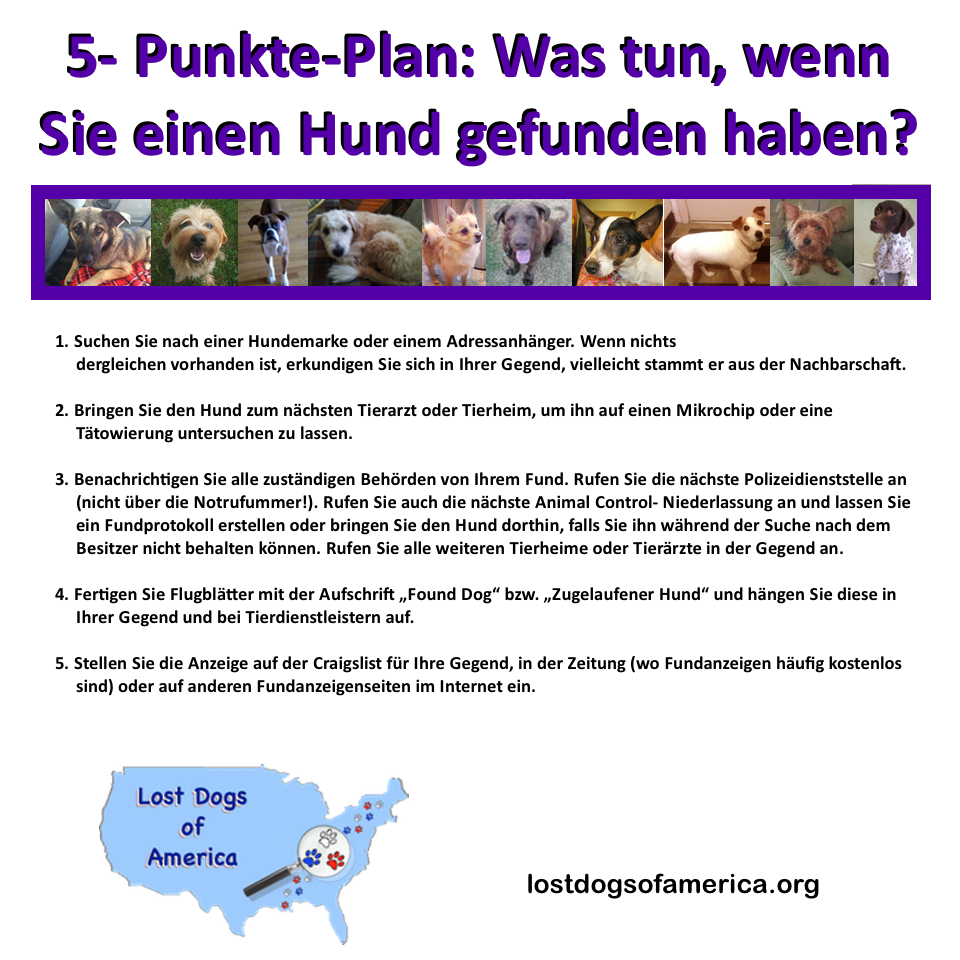 LDoA-German 5 Things FOUND FOUND Flyer