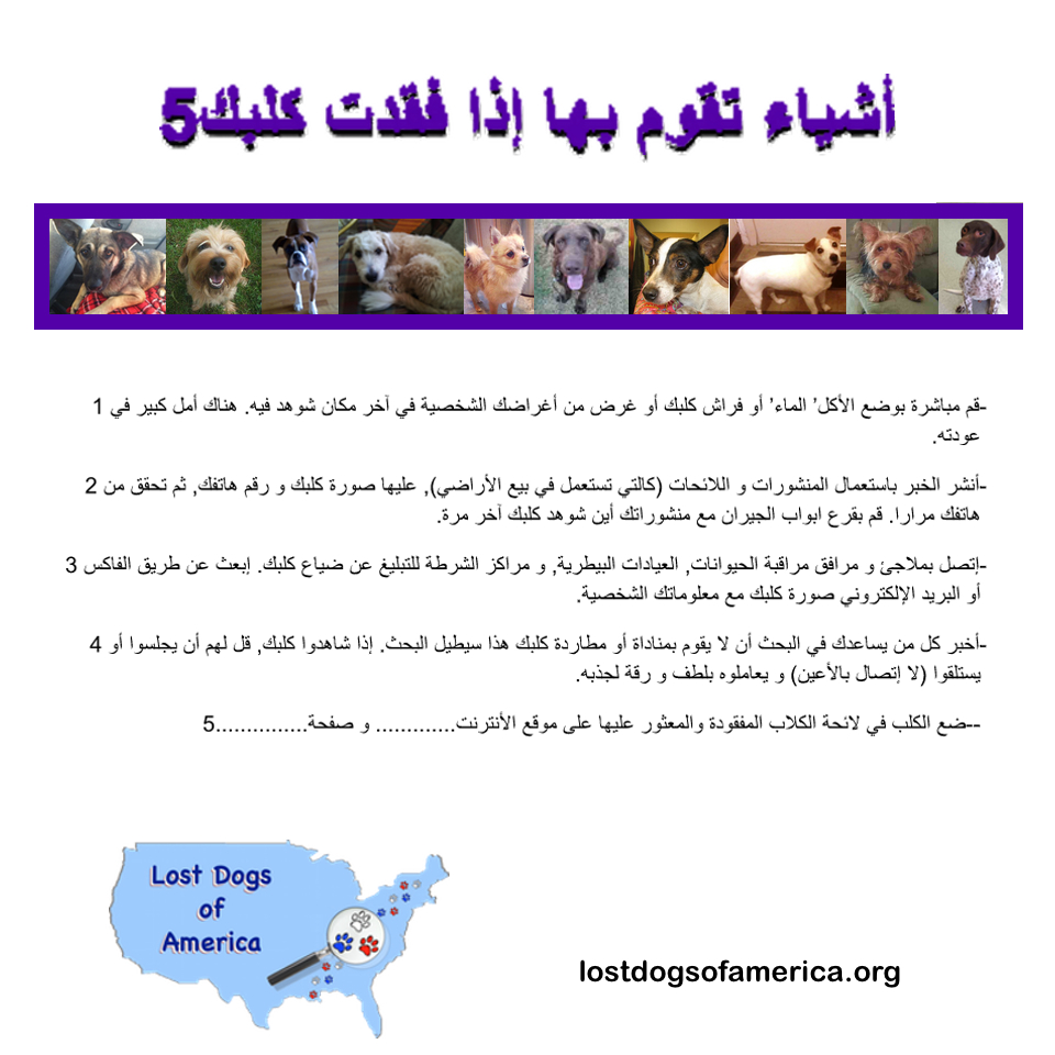 LDA-Arabic 5Things FOUND Flyer