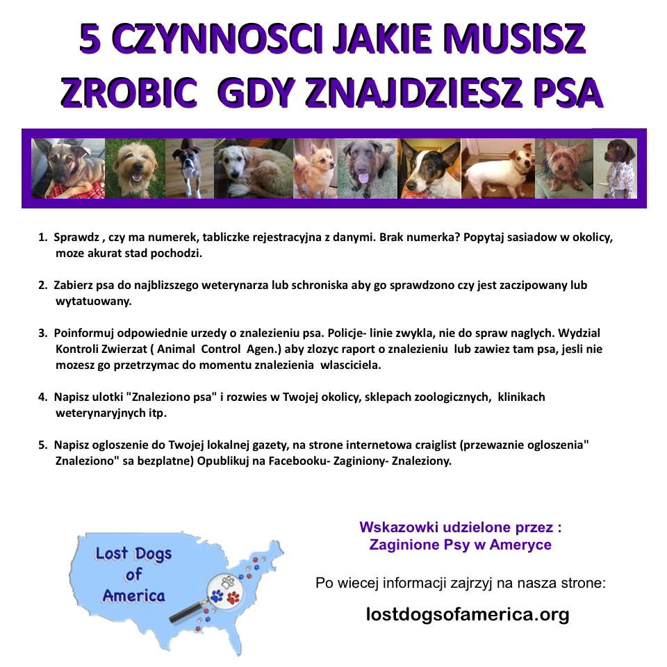 LDA-Polish 5Things FOUND Flyer