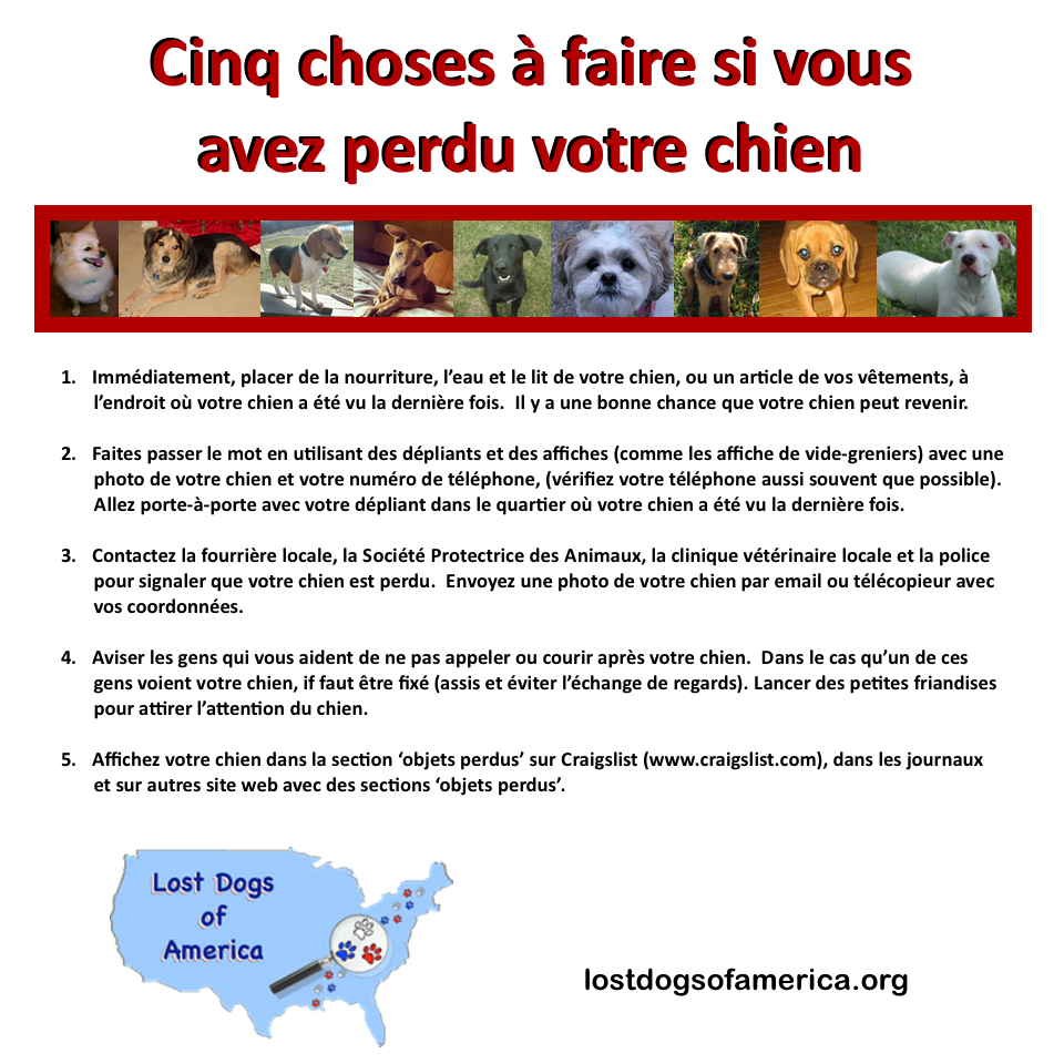 LDoA-French 5 Things LOST Flyer