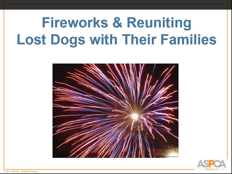 ASPCA Fireworks cover