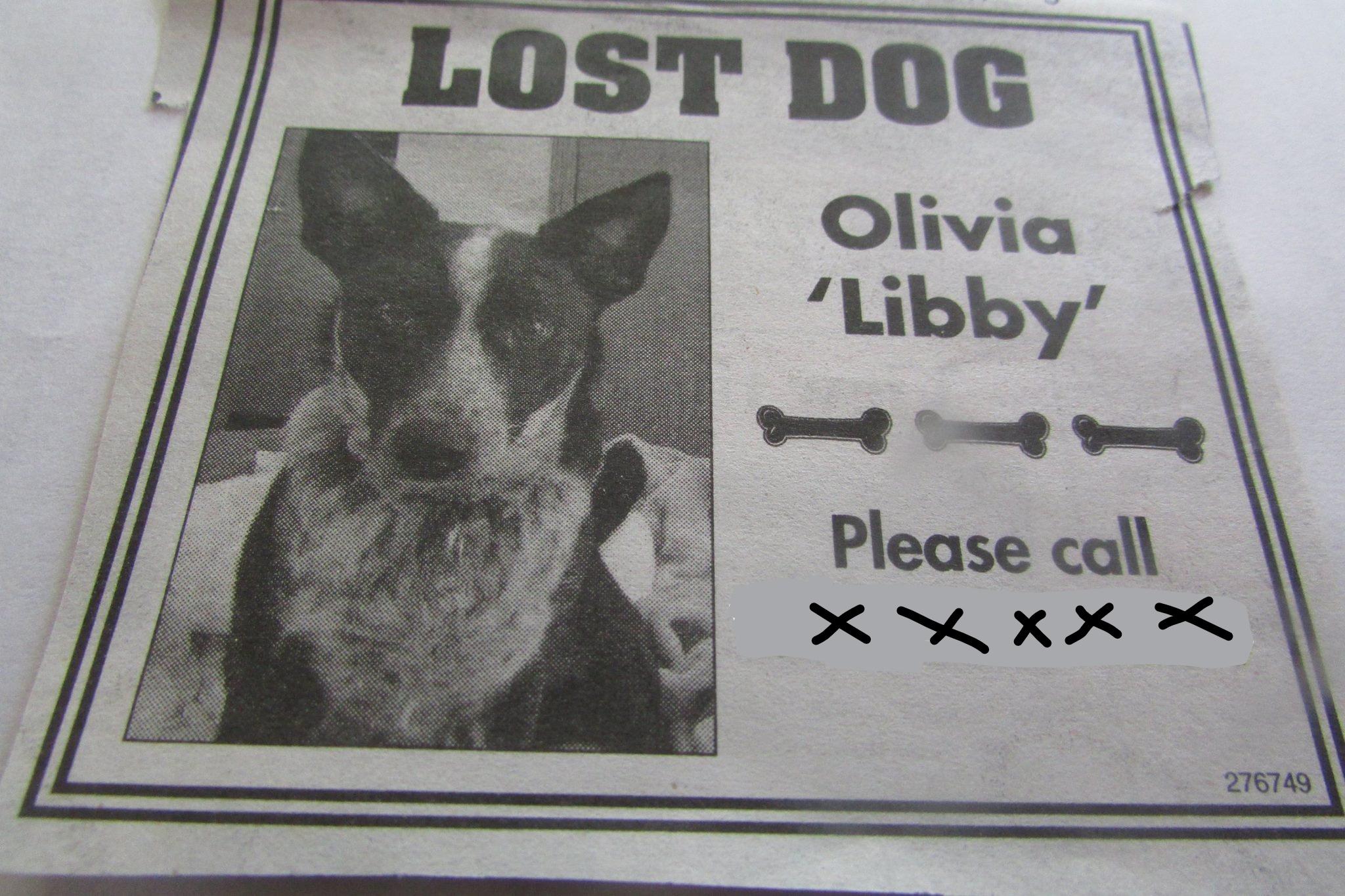 Libby ad_LI